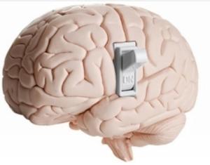 brain switch1